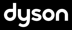 3.Dyson