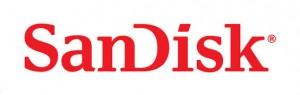 3.SanDisk