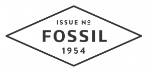3-fossil